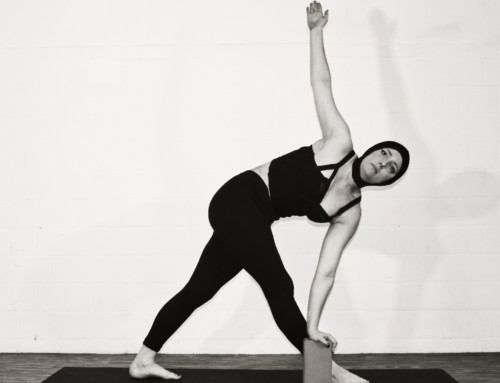 Curso de Formação em Yoga com Clarissa Brittes