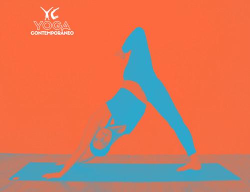 O que precisa para se tornar um professor de Yoga